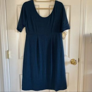 Rosie Pope Maternity Dress